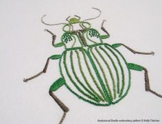 beetle embroidery