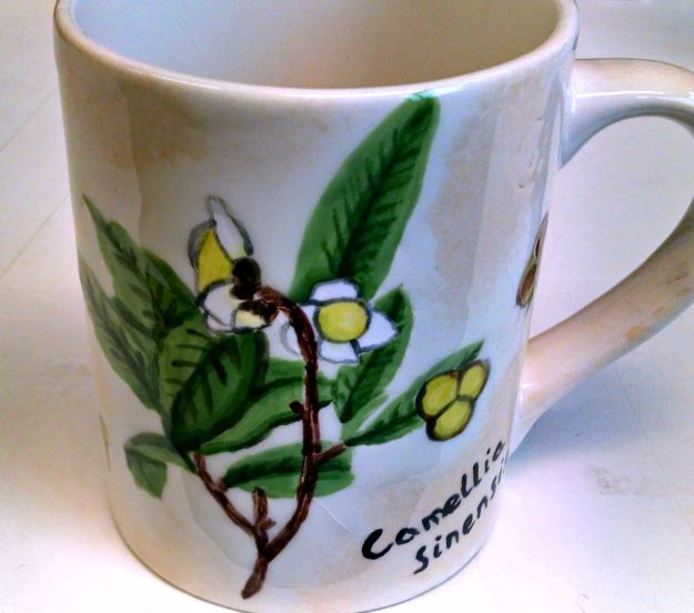 Mug painted with botanical drawing of a tea plant